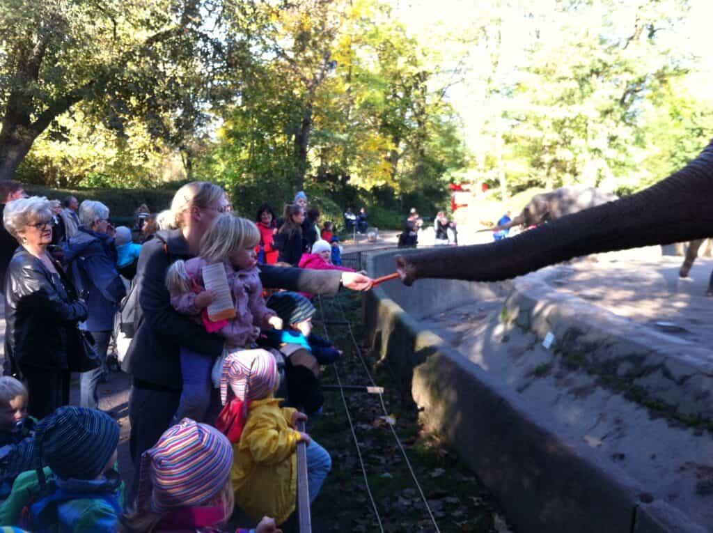 hamborg zoo for børn